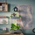 Mini huertas orgánicas: la tendencia que permite tener tus propias hierbas y vegetales frescos