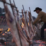 Puerto Madryn, el destino patagónico que fusiona turismo y gastronomía