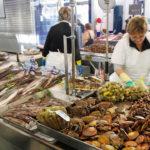 Guía rápida para conocer los mejores pescados argentinos