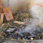 """Curanto, secretos del """"asado"""" mapuche"""