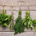 Estas son las 8 hierbas aromáticas imprescindibles para tu cocina