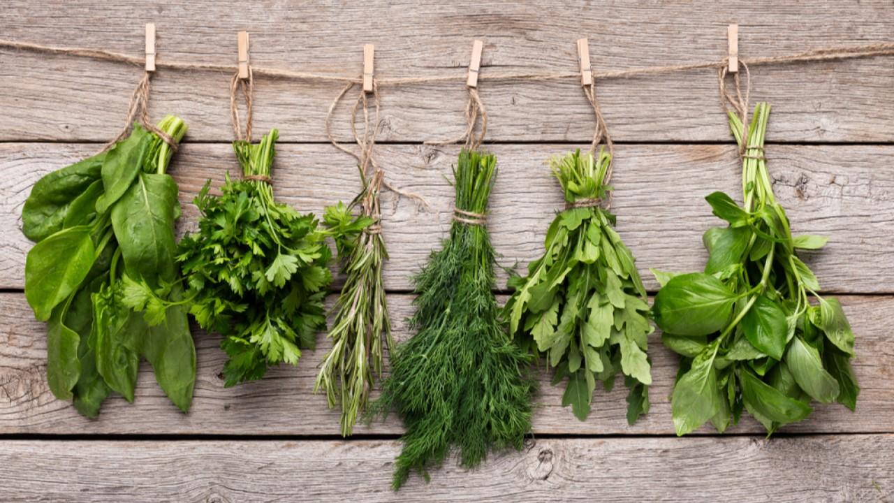 Estas son las 8 hierbas arom ticas imprescindibles para tu - Plantas aromaticas en la cocina ...