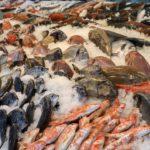 ¿Dónde comprar pescado en Buenos Aires?
