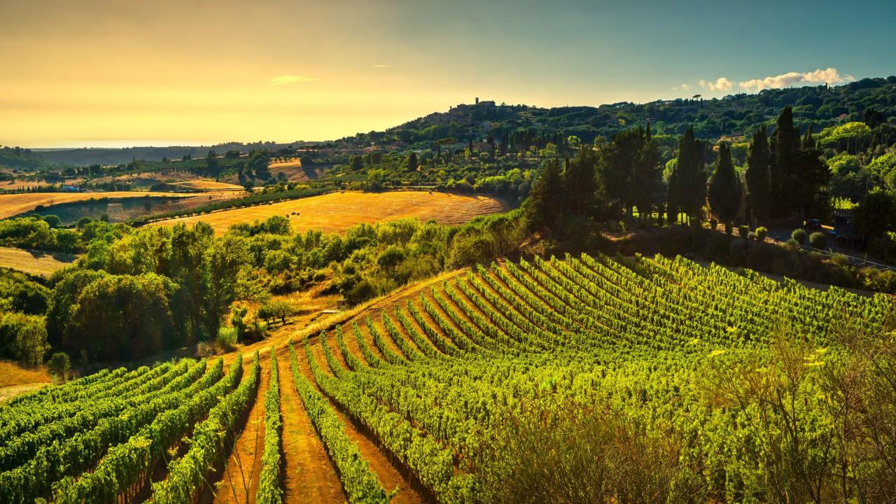 Diccionario del vino qu es el terroir cucinare for Cucinare sinonimo