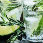 Conocé cómo nació el gin tonic