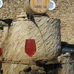 Italia inaugura la primera fuente para tomar vino gratis