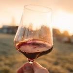 Crear tu propio vino, una tendencia que crece en la Argentina