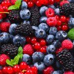 Frutos rojos: explosión de sabor y color patagónico