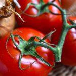 Cada vez es más difícil conseguir tomates ricos