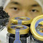China conquista la alta cocina mundial con su propio caviar