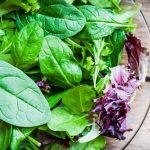 Mucho más que lechuga: hojas para tu ensalada