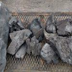 Fuego para el asado: el debate sobre el uso de la bolsa de carbón