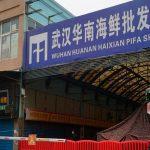 Un extraño mercado de alimentos podría ser el origen del virus chino