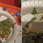 Después de la rana en la ensalada: ahora apareció una cucaracha en un plato del patio de comidas del mismo shopping