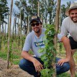 Vino argentino: en medio de pandemia, lanzan el primer vino de la provincia de Santa Fe