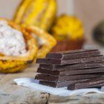 Cata de chocolate premium en modo virtual: relato de una experiencia única