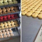 Un pastillero de chocolate premium, el original proyecto de un pastelero argentino para ser feliz en cuarentena