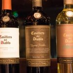 Vino argentino con acento chileno: la bodega chilena Concha y Toro producirá su etiqueta emblemática en la Argentina