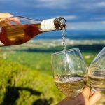 Una bodega ofrece 320 dólares por degustar vinos en casa