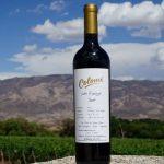 Un vino argentino, entre los cinco mejores tintos del mundo