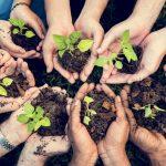 Hambre, salud y diversificación agrícola, temas clave del Día Mundial de la Alimentación 2020