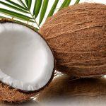 Coco: beneficios, secretos y usos de la fruta que llega desde Brasil