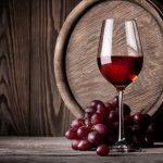 Día del Vino Argentino: por qué se celebra cada 24 de noviembre