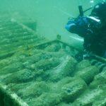 Bodega submarina: los detalles inéditos del proyecto argentino que promete vinos únicos con espíritu marino