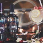Mendoza, la tierra del sol y del buen vino… y ahora también del gin