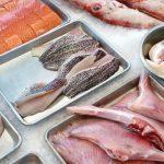 Fraude marino: más de un tercio de los pescados y frutos de mar se venden con nombre diferente