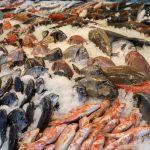 Pascuas 2021: los pescados llegan con un fuerte aumento