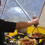 La mendocina que vendió panchos, comida vegana y ahora es la cocinera del Aconcagua y el Everest