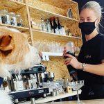 Tragos para perros y humanos, la principal atracción del bar creado especialmente para mascotas